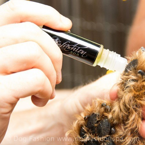 Dog Paw + Nose Moisturizer by Dog Fashion Spa