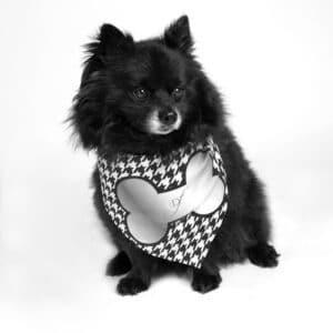 Silver Bone Classy Dog Bandana by Dog Fashion Living