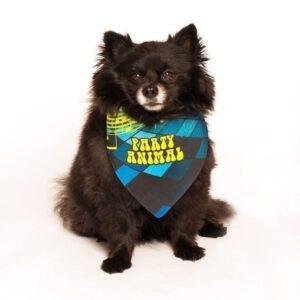 Party Animal Birthday Dog Bandana by Dog Fashion Living