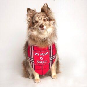My Mom Is Single Dog Bandana by Dog Fashion Living