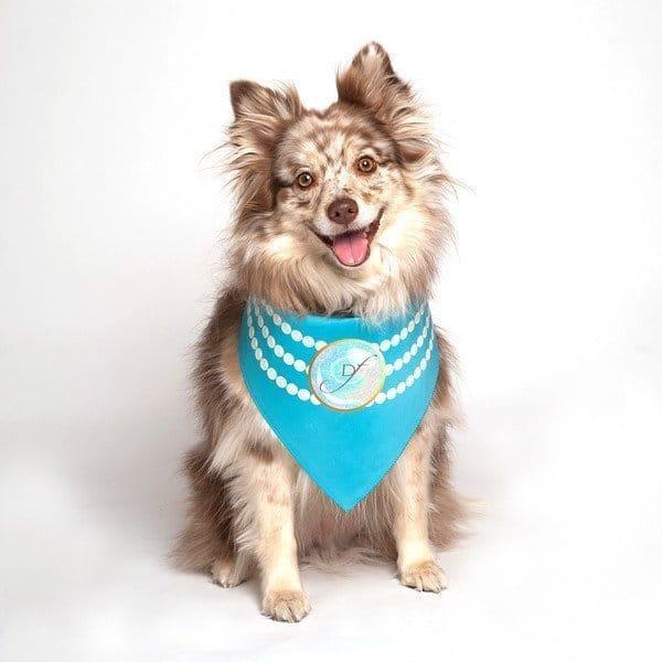 Pearl Fashion Wedding Dog Bandana by Dog Fashion Living