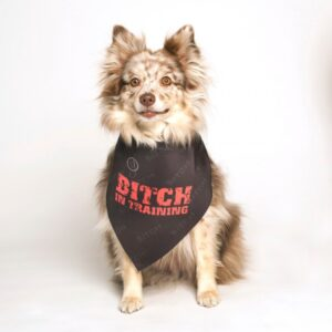 dog fashion living bitch in training bandana
