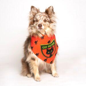 dog fashion living cat patrol bandana