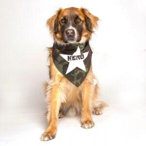 dog fashion living hero dog military bandana
