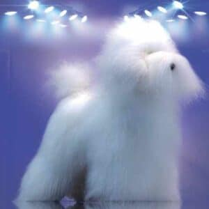 Toy Poodle Model Dog Full Body Hairpiece by Artero