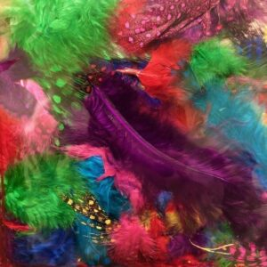 Creative Feathers - Mixed Colors